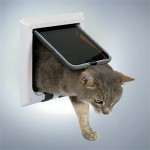 Giv katten frihed (foto lavprisdyrehandel.dk)