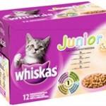Hvad giver du din kat? (foto petworld.dk)
