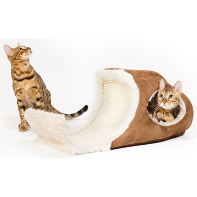 symptomer på katteallergi