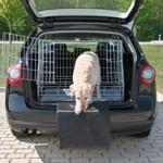 Et hundegitter gør turen nemmere for både dig og din hund (foto: lavprisdyrehandel.dk)